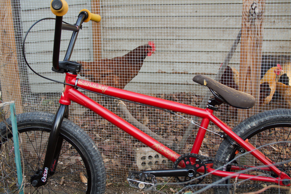 Rooster | Sunday Bikes